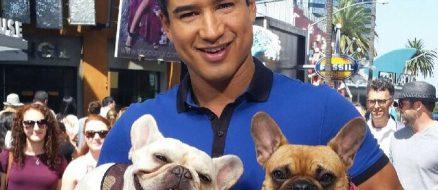 Mario Lopez Pets