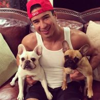 Mario Lopez - french bulldogs Instagram