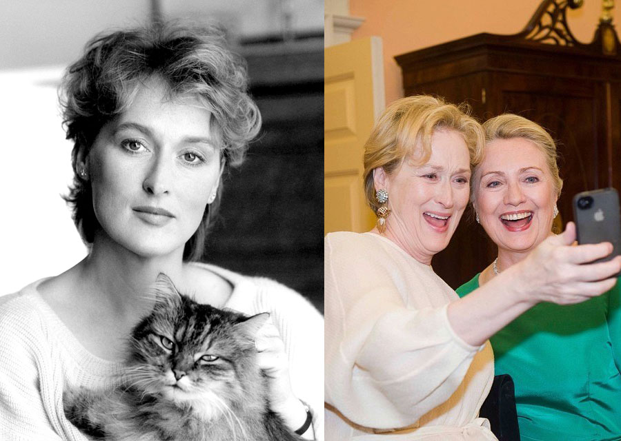 Meryl Street - Cat - Hilary Clinton