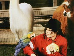 Michael Jackson with animals at his zoo