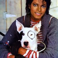 Michael Jackson's pet Dogs