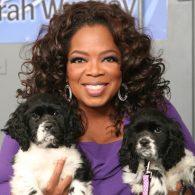 Oprah Winfrey's pet Lauren
