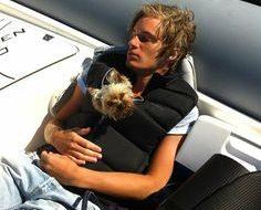 PewDiePie - Yorkshire Terrier - Ynk