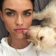 Ruby Rose's pet Ru