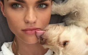 Ruby Rose - dog -Ru