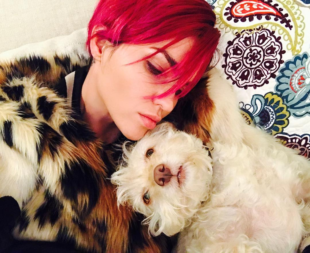 https://celebritypets.net/wp-content/uploads/2017/02/ruby-rose-dog-ru-instagram.jpg