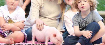 Tori Spelling Joins the Mini Pig Craze