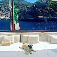 Valentino's pet Monty