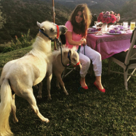 Lisa Vanderpump's pet Diamonds and Rose