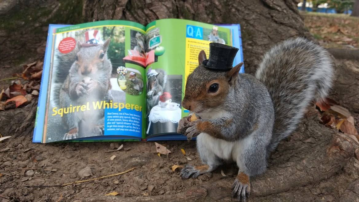 Sneezy The Penn State Squirrel