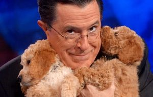 Stephen Colbert with dogs
