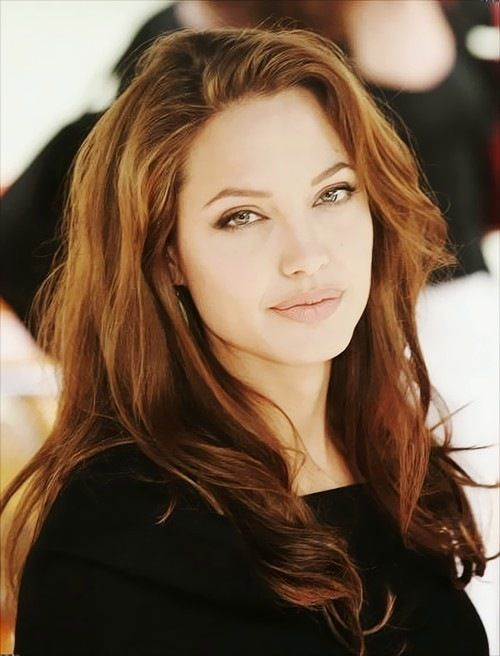Angelina Jolie Pets Celebrity Pet Worth