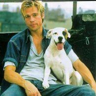 Brad Pitt's pet Blanco