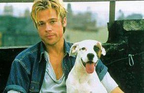 Brad Pitt - Blanco - dog