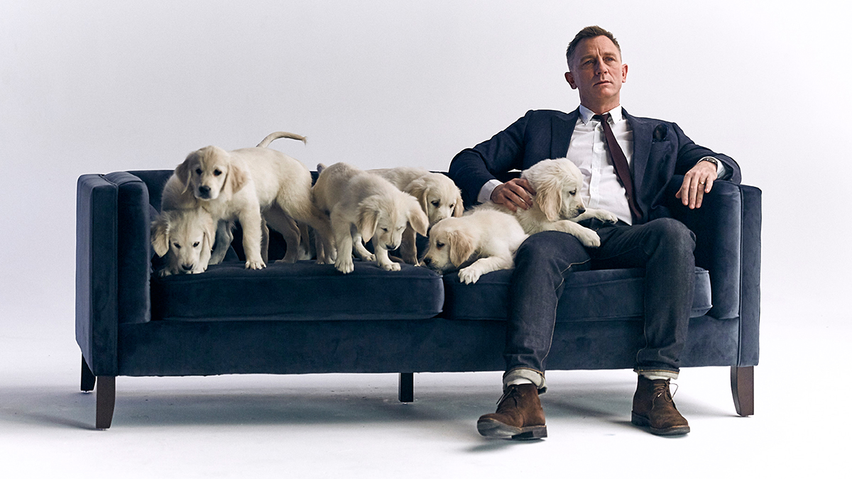 Daniel Craig Teams Up With Cute Puppies For Charity