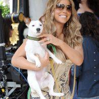 Mariah Carey's pet Pipitty Jackson