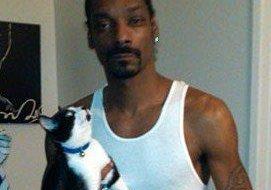 Snoop Dogg - cats