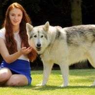 Sophie Turner's pet Zunni (Lady the Direwolf)