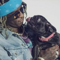 Young Thug's pet French Bulldog
