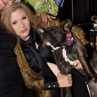 Carrie Fisher's pet Gary Fisher