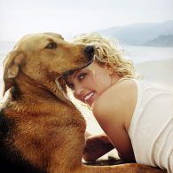 Charlize Theron's pet Tucker