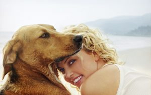 Charlize Theron - dog - Tucker