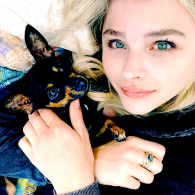 Chloe Grace Moretz's pet Pearl
