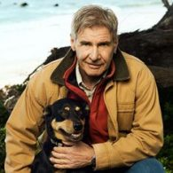 Harrison Ford's pet Rescue dogs