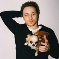 James McAvoy's pet Long-Haired Chihuahua