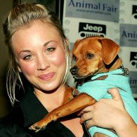 Kaley Cuoco's pet Petey
