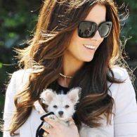Kate Beckinsale's pet Ingrid