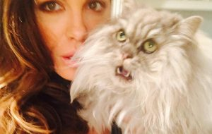 Kate Beckinsale - fluffy cat - Clive