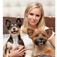 Kristen Bell's pet Lola and Mr. Shakes