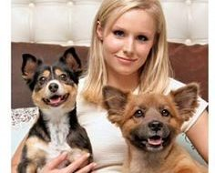 Kristen Bell - dogs- Lola and Mr. Shakes