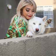 Kristin Maldonado's pet Olaf