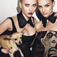 Scarlett Johansson's pet Maggie
