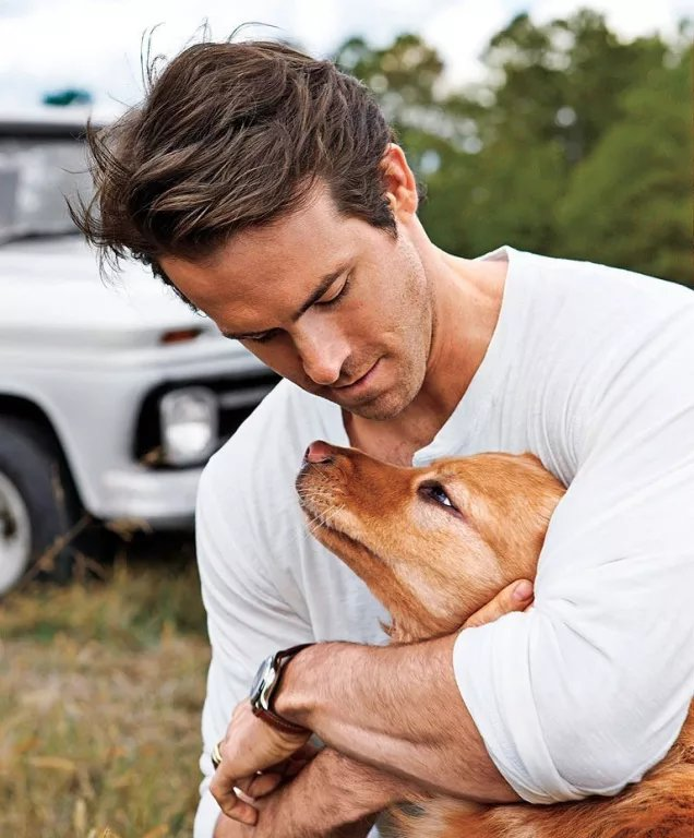 Ryan Reynolds Pets - Celebrity Pet Worth