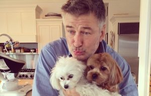 Alec Baldwin - dogs - Instagram