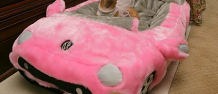 Conchita, a Chihuahua Dubbed The Queen of Miami, Inherits a $12.4 Million Fortune