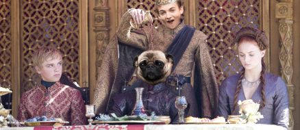 Game of Thrones' King Joffrey had a Photoshop Battle with a Pug