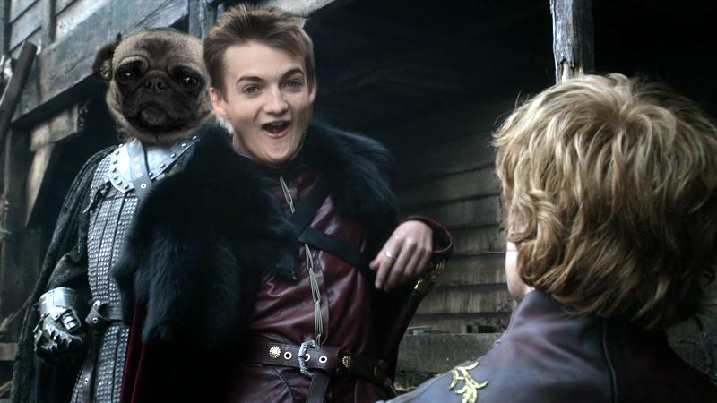 Jack Gleeson - pug - King Joffrey 3