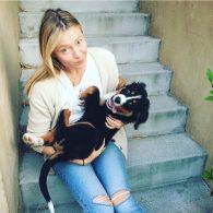 Maria Sharapova's pet Bruiser