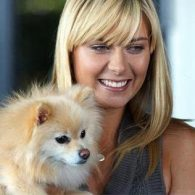 Maria Sharapova's pet Dolce