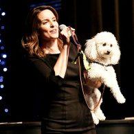 Tina Fey's pet Teddy