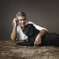 George Clooney's pet Einstein