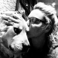 Katherine Heigl's pet Tamber and Flora