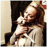 Katherine Heigl's pet Gertie