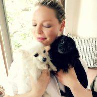 Katherine Heigl's pet Poppy