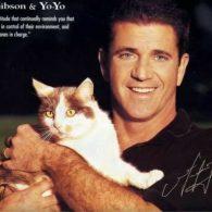 Mel Gibson's pet Yo-Yo
