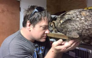 Owl remembers man who saved her life 4